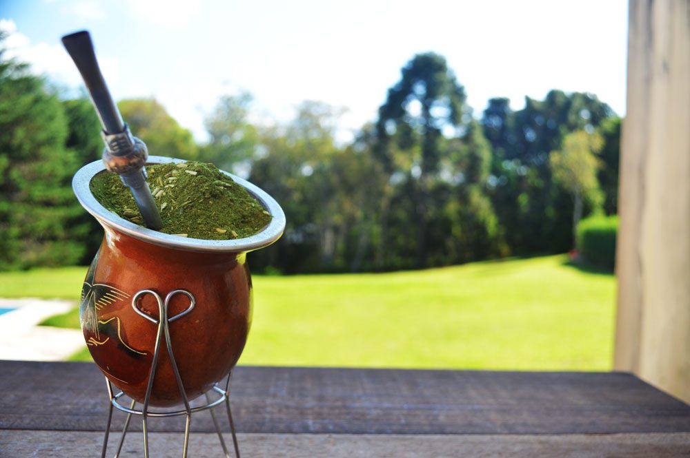 Yerba Mate filled gourd and bombilla